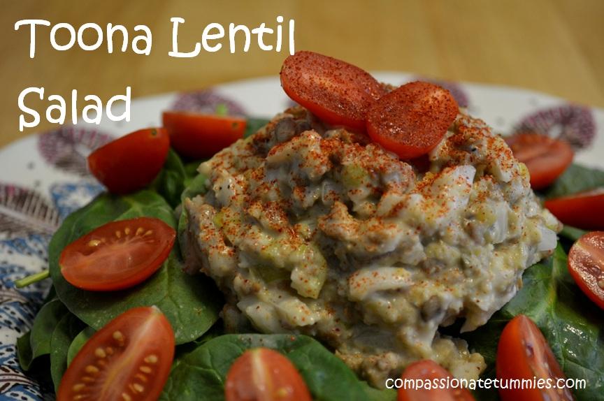 Sophies Kitchen Vegan Toona Review