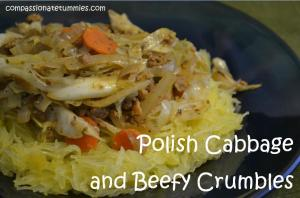 Polish Cabbage and Beefy Crumbles