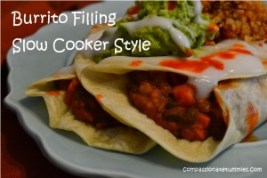 Burrito Filling Slow Cooker Style