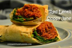 Red Lentil Sloppy Jane Wraps