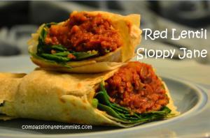 Red Lentil Sloppy Jane Wraps